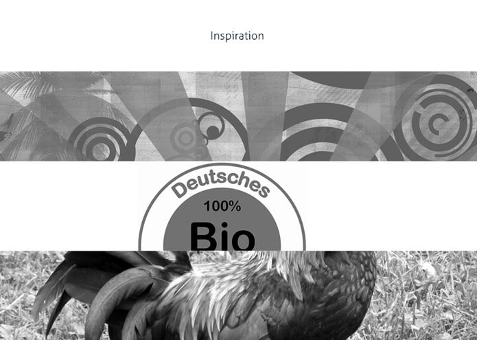 referenz-detail-duerr_mager-logo-3